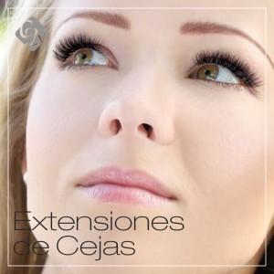 Extension de Cejas