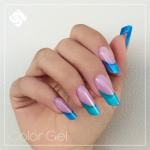 GEL DE COLOR PERMANENTE